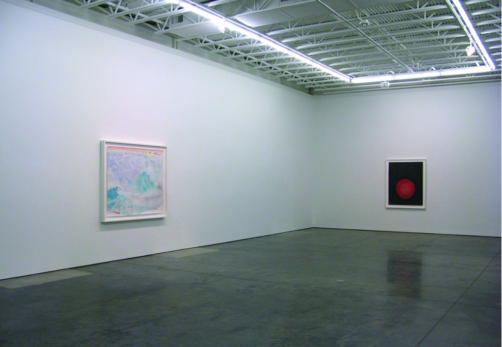 <em>Earthly,</em> exhibition, dolphin gallery, kansas city, mo 2013