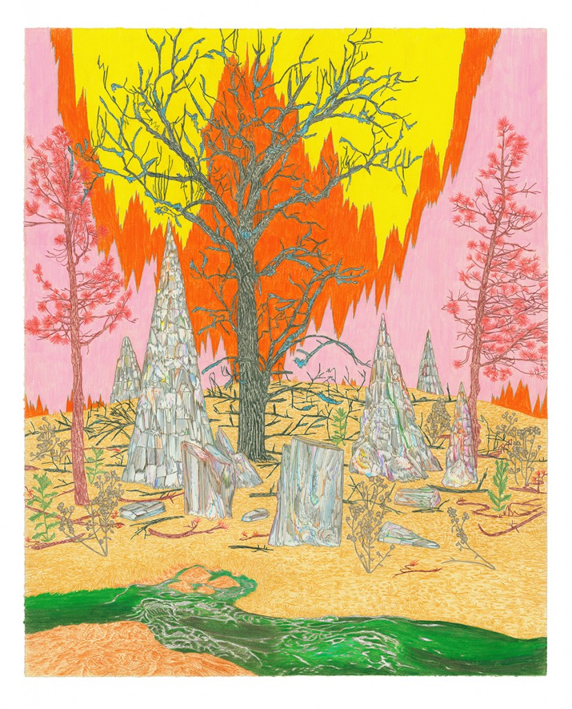 &nbsp;&nbsp;&nbsp;&nbsp;&nbsp;&nbsp;<em>petrified grove,</em> colored pencil, 25