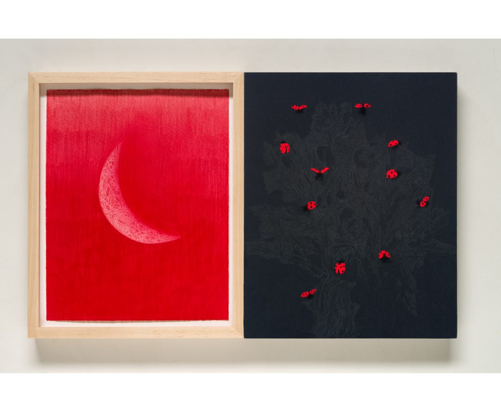 <em>the black thistle, the red moon and the ladybugs, </em>acrylic on linen, colored pencil on paper w/ custom frame inlaid w/ collar buttons