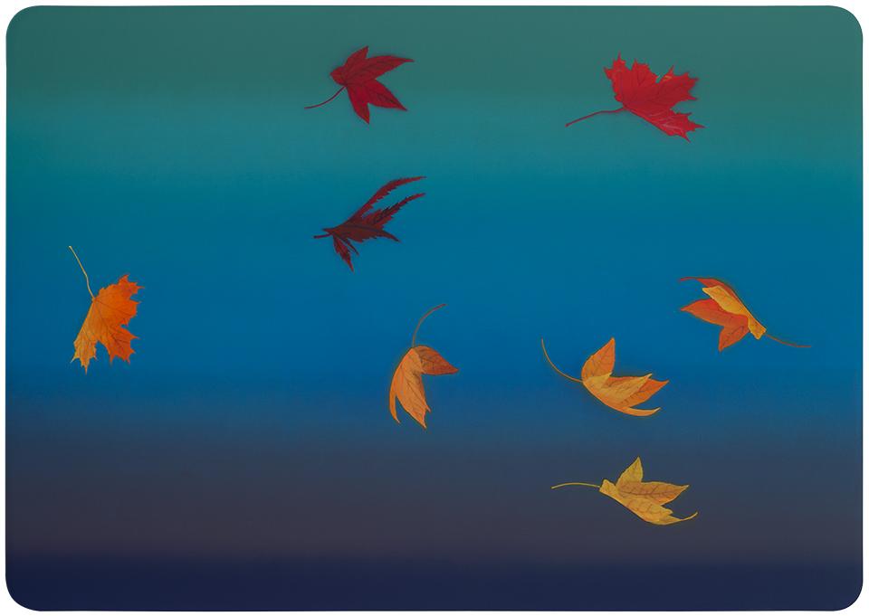 falling_leaves(flat_sm96)
